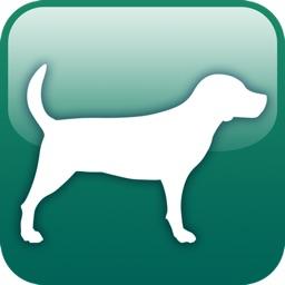 Canine Flashcards