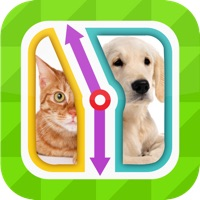 Codes for TicToc Pic: Cat or Dog Edition - Reaction Test Game Hack