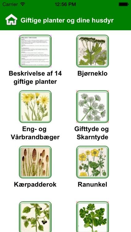 App Giftige Planter