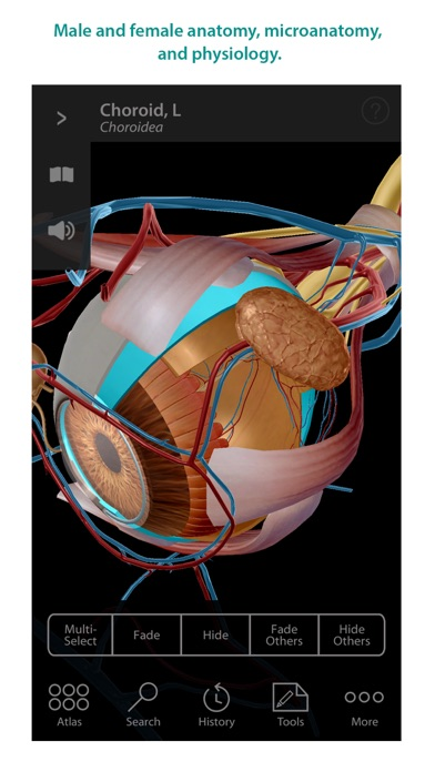 Screenshot for Human Anatomy Atlas – 3D Anatomical Model of the Human Body in Hong Kong App Store