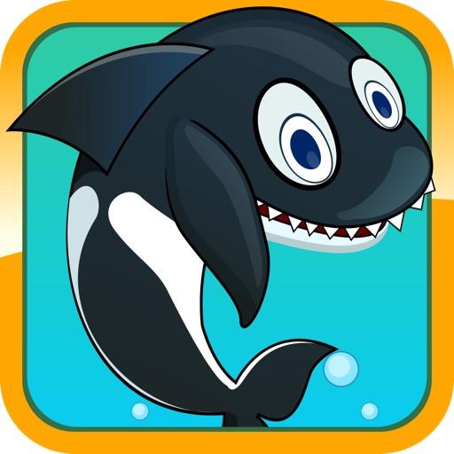 Sea Whale Splash
