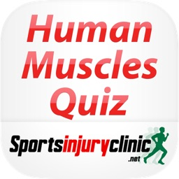 Human Muscles Quiz from Sportsinjuryclinic.net