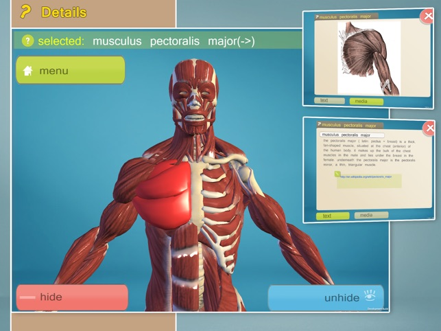 Easy Anatomy 3D Screenshot