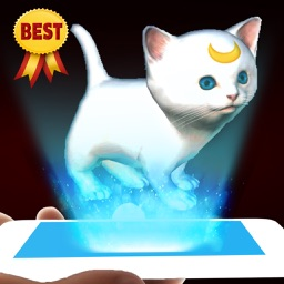 AR Virtual Pet - 3D kitten augmented reality simulator