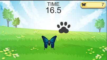 【猫が遊べるアプリ】 Kitten to Tap紹介画像1