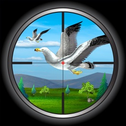 Bird Hunting - Real Adventure Flying Bird Shooting Game