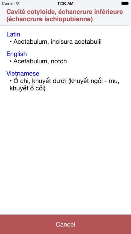 Anatomy Dictionary screenshot-0