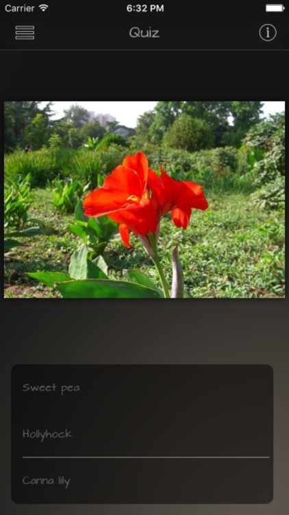 Flower Colors Info Kit