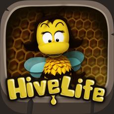 Activities of Hivelife