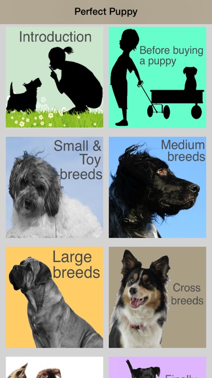 Perfect Puppy - find the right breed of dog.