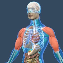 Animated Physiology Human Atlas