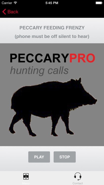 REAL Peccary Calls and Peccary Sounds for Hunting Call screenshot-0
