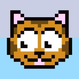 Clumsy Karate Cat