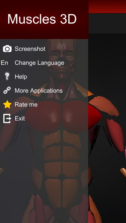 Muscular System 3D (anatomy) screenshot-3