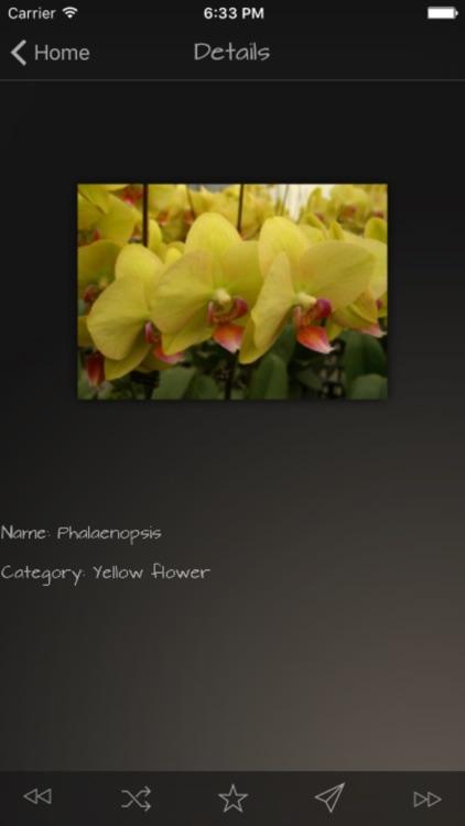 Flower Colors Info Kit screenshot-4