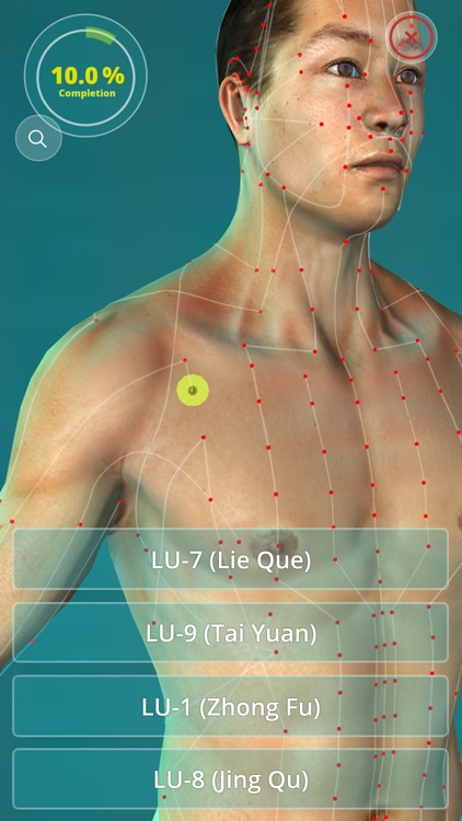 Acupuncture Quiz - Point Locations