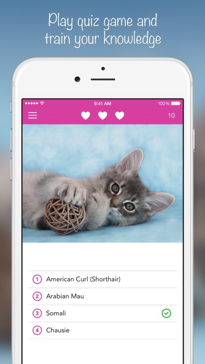iKnow Cats 2 PRO - Cat Breed Guide screenshot-3