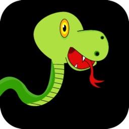 Snake Swipe Fun - Don't play with Dangerous Animals