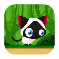 Activities of Game of Cat