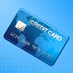 Credit Cards and Cheques Keeper