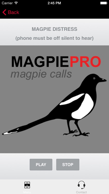 REAL Magpie Hunting Calls - REAL Magpie CALLS & Magpie Sounds! screenshot-0