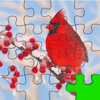 Codes for Puzzles Amazing Jigsaw Birds Collection Pro Hack