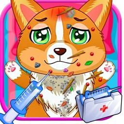 Dog Care Hospital - Pet Carrying Hospital for kids