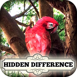 Hidden Difference - Tree of Life