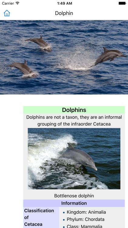 CHI Encyclopedia of Animals