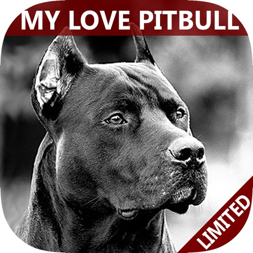My Best Pet is PitBulls - Easy Train Your Bully & Dangerous Pit Bull To Obey Right!