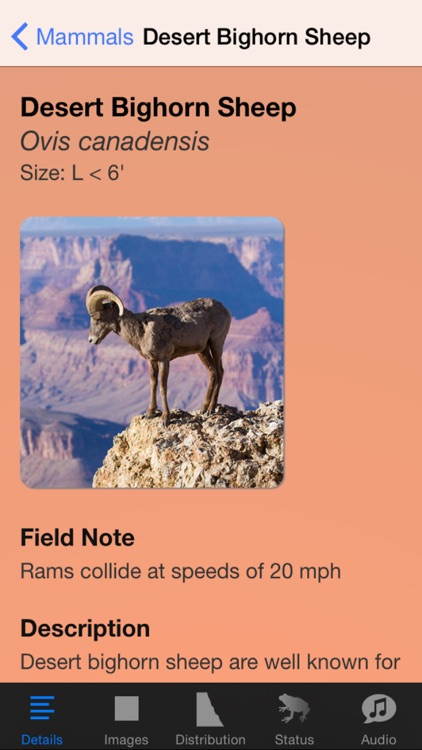Grand Canyon National Park Field Guide