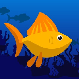Fish Rush - Endless Fish Jump Game