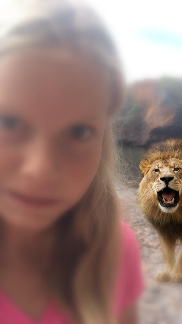 Lion Booth screenshot one