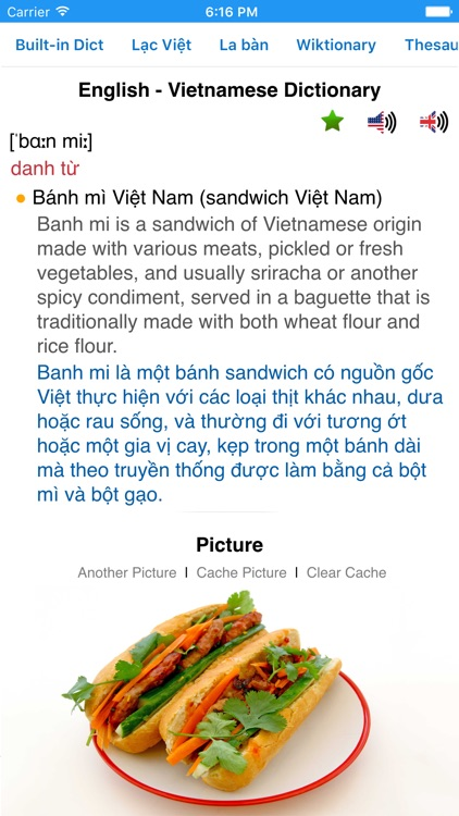 Vietnamese Dictionary screenshot-0