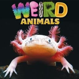 Weird Animals - CLIL Reader