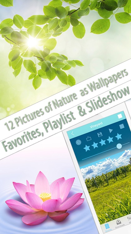 Free Nature Music to Relax, Meditate & Sleep screenshot-3