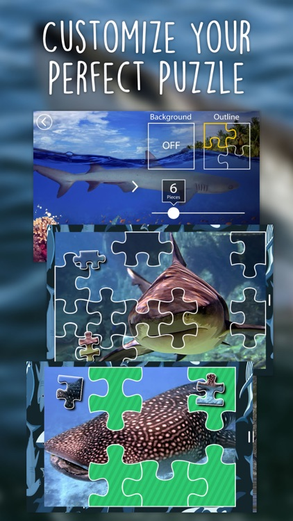 Shark Puzzles for Kids Jigsaw Wonder Collection screenshot-1
