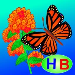 Câu chuyện của bướm và hoa (Truyện thiếu nhi từ tác giả Hiền Bùi)