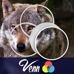 Venn Wolves: Overlapping Jigsaw Puzzles