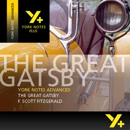 The Great Gatsby York Notes Advanced