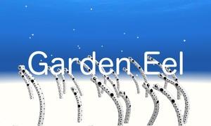 Garden Eel VR