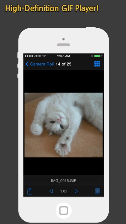 GIF Show - GIF Viewer and Album