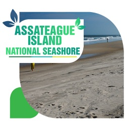 Assateague Island National Seashore Travel Guide