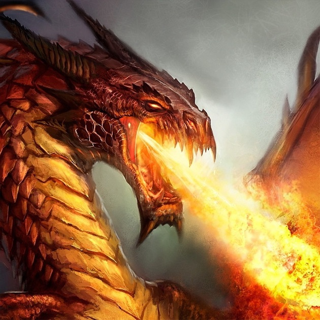 Dragon Wallpapers Backgrounds Amazing Fire Wallpaper Free HD