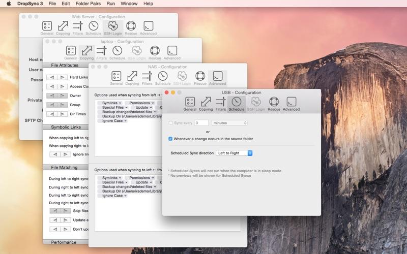 DropSync 3 скриншот программы 5
