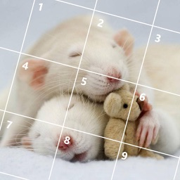 Cute Mouse Jigsaw Puzzles