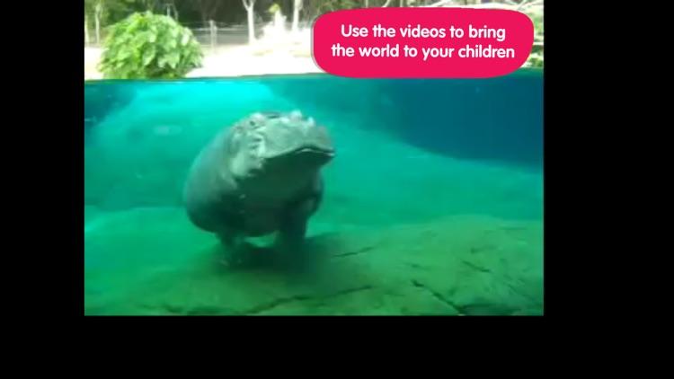 ABC Wildlife screenshot-3