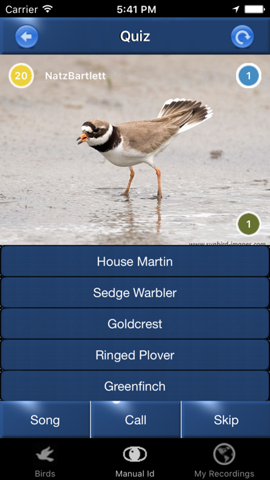 Bird Song Id Automatic Recognition & Reference - Birds of the British Isles screenshot four