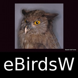 Birds of the World - eBirdsW - A Bird App