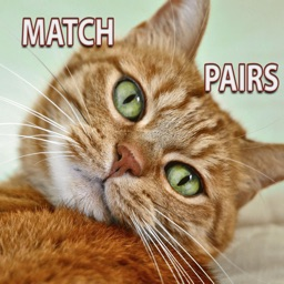 Cats Memory Matching Pairs - Improve concentration in this rainbow game
